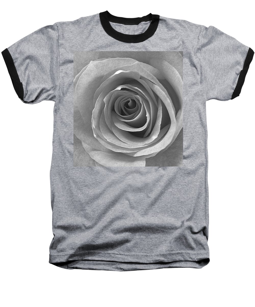 Rose Pedals Baseball T-Shirt featuring the photograph Black And White by Luciana Seymour