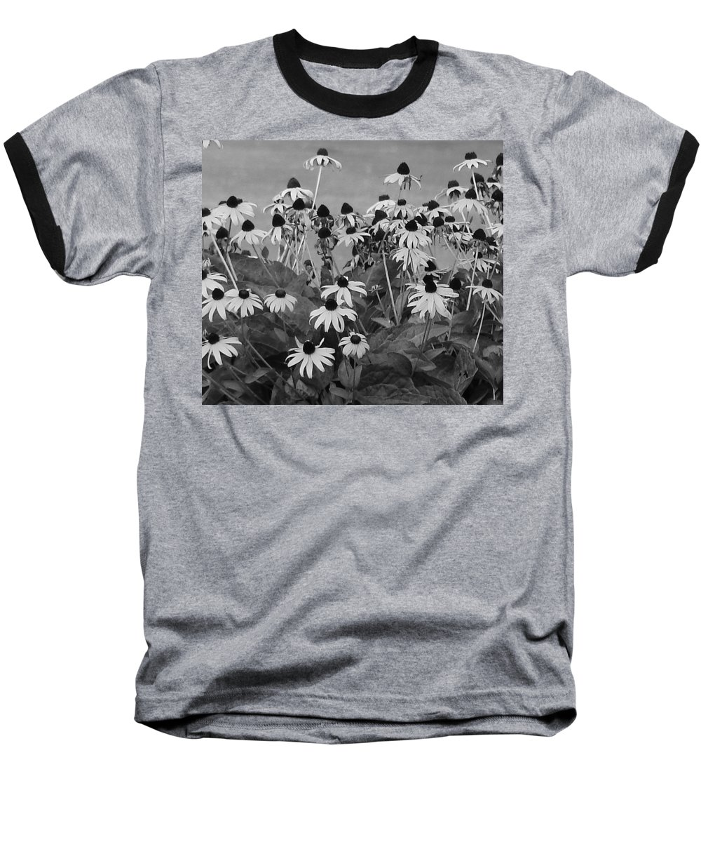 Baseball T-Shirt featuring the photograph Black And White Susans by Luciana Seymour