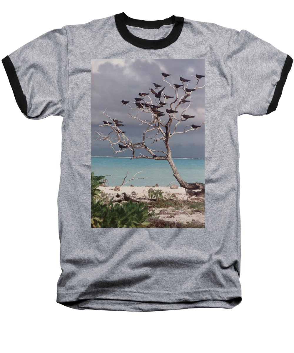 Charity Baseball T-Shirt featuring the photograph Black Birds by Mary-Lee Sanders