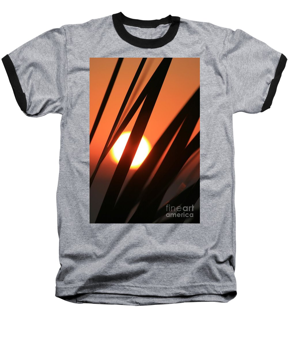 Sun Baseball T-Shirt featuring the photograph Blazing Sunset And Grasses by Nadine Rippelmeyer
