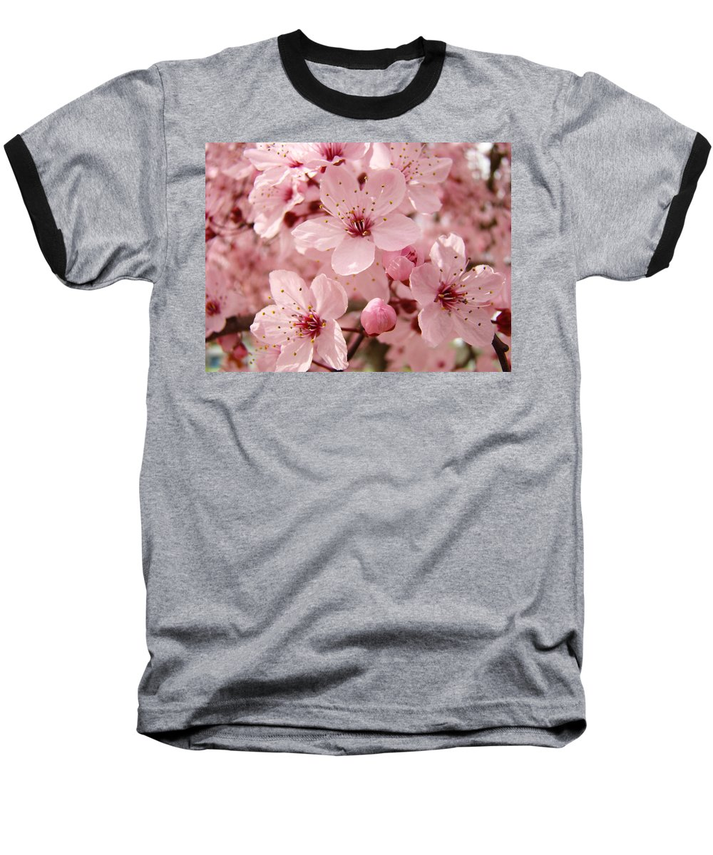 Nature Baseball T-Shirt featuring the photograph Blossoms Art Prints 63 Pink Blossoms Spring Tree Blossoms by Baslee Troutman