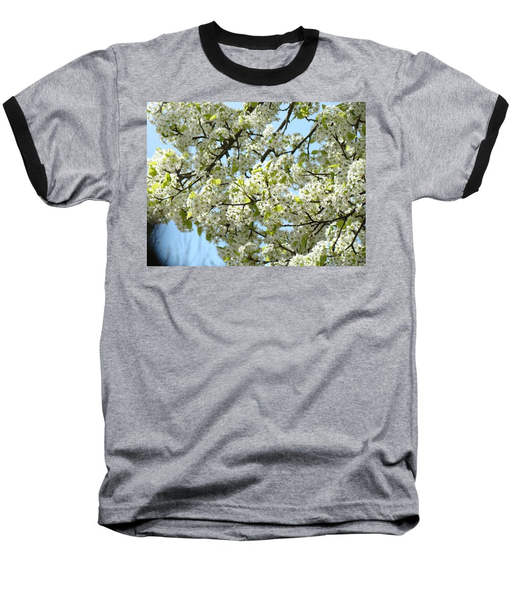 �blossoms Artwork� Baseball T-Shirt featuring the photograph Blossoms Whtie Tree Blossoms 29 Nature Art Prints Spring Art by Baslee Troutman