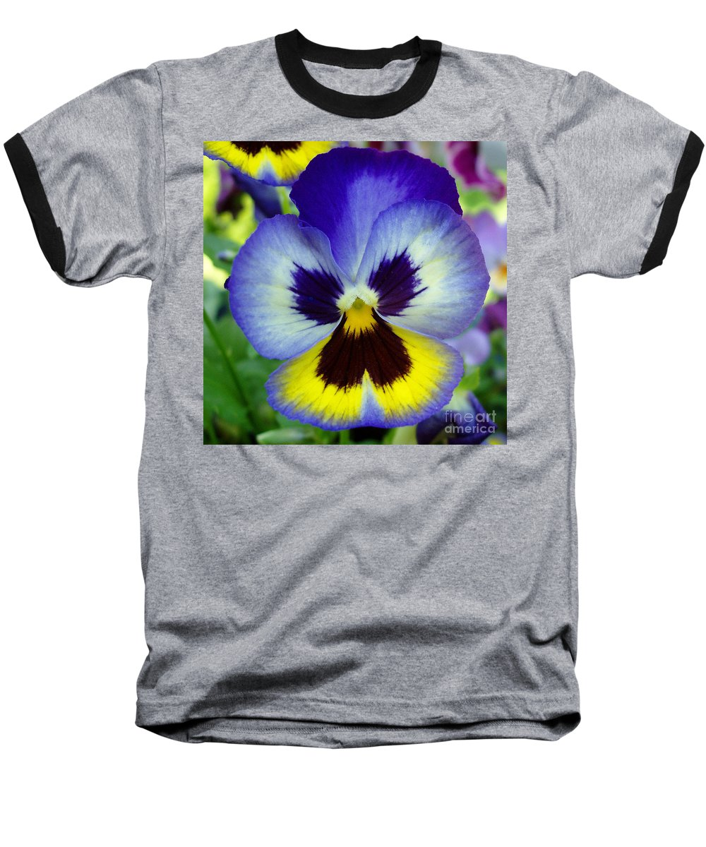 Flowers Baseball T-Shirt featuring the photograph Blue And Yellow Pansy by Nancy Mueller