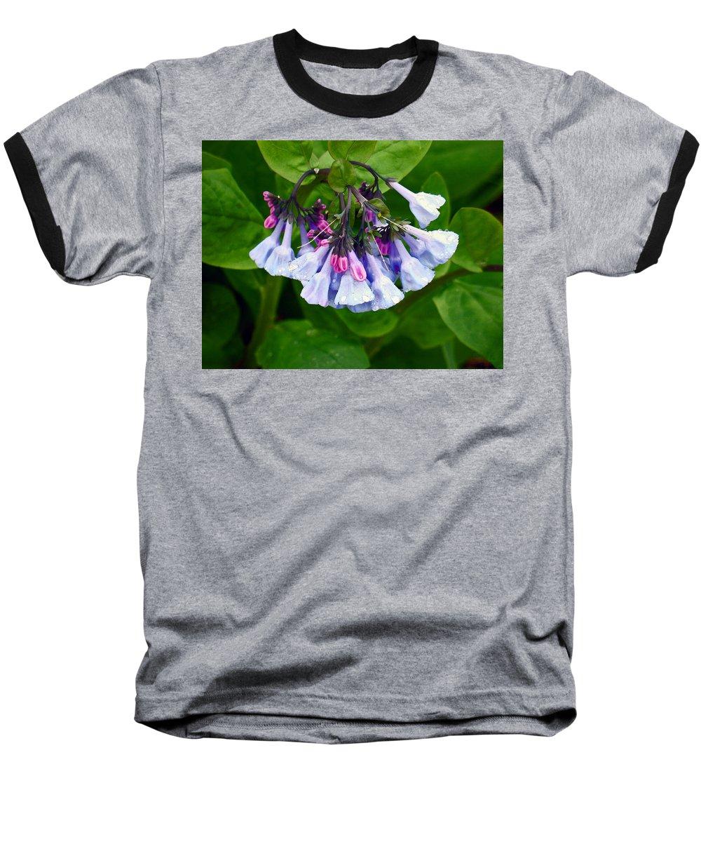 Native Landscape Baseball T-Shirt featuring the photograph Blue Bells by Steve Karol