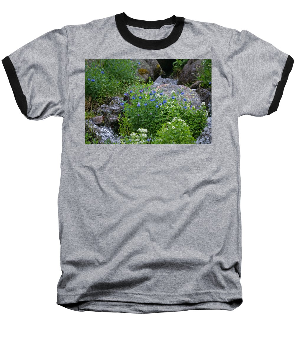 Wildflowers Baseball T-Shirt featuring the photograph Bluebells by Heather Coen