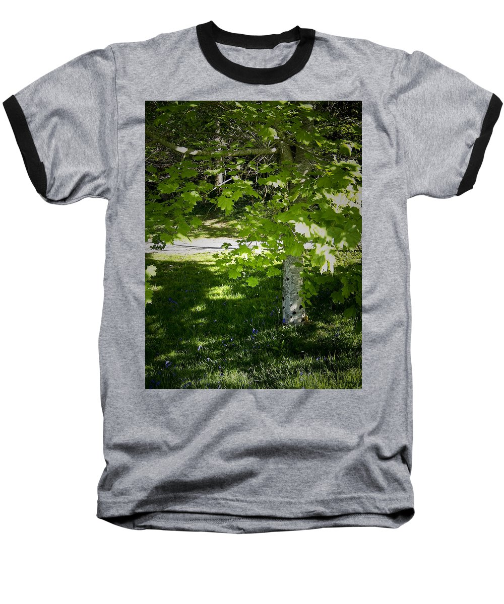 Irish Baseball T-Shirt featuring the photograph Bluebells In Killarney National Park Ireland by Teresa Mucha