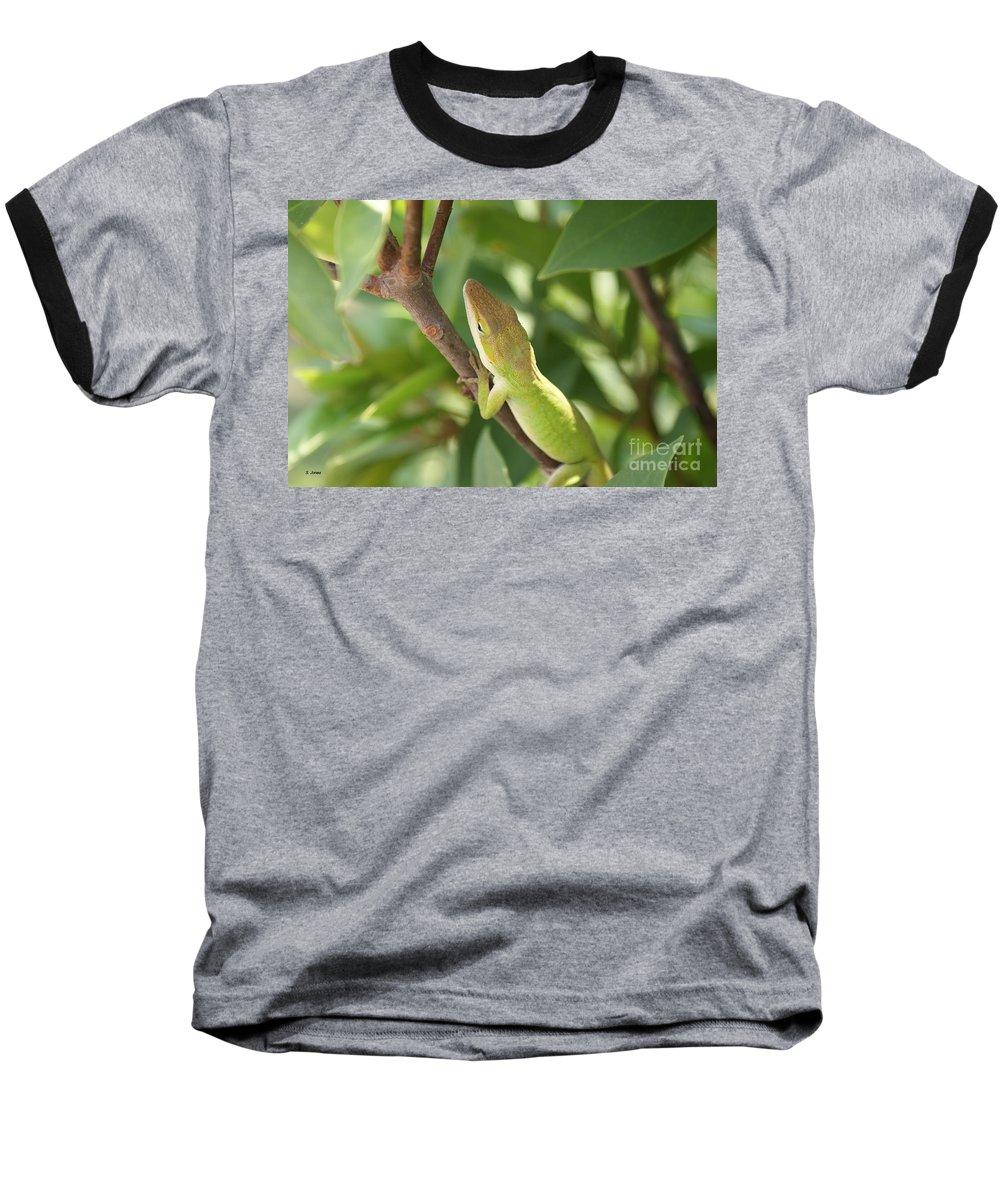 Lizard Baseball T-Shirt featuring the photograph Blusing Lizard by Shelley Jones