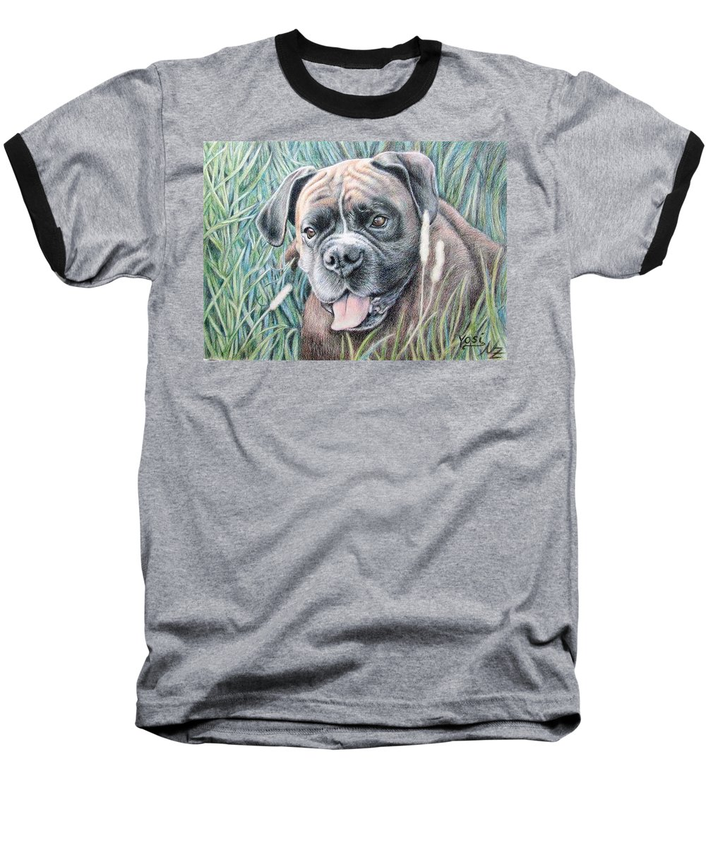 Dog Baseball T-Shirt featuring the drawing Boxer Yosi by Nicole Zeug