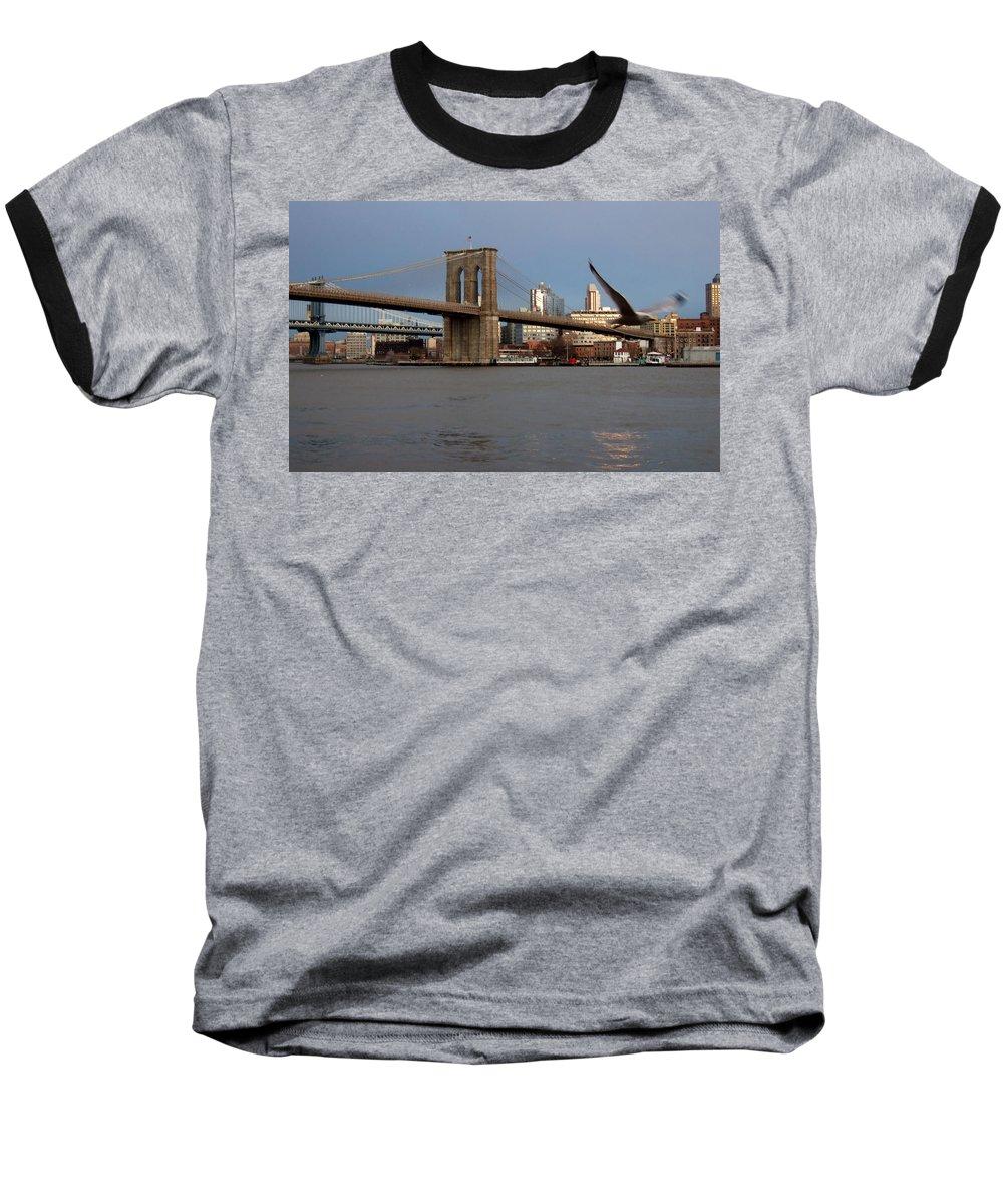 Brooklyn Bridge Baseball T-Shirt featuring the photograph Brooklyn Bridge And Bird In Flight by Anita Burgermeister