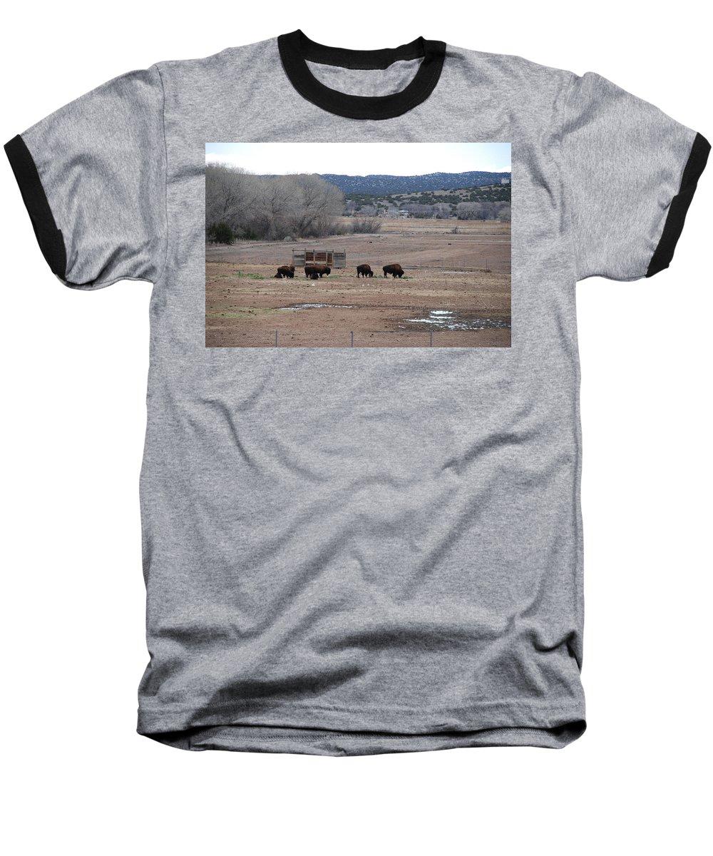 Buffalo Baseball T-Shirt featuring the photograph Buffalo New Mexico by Rob Hans