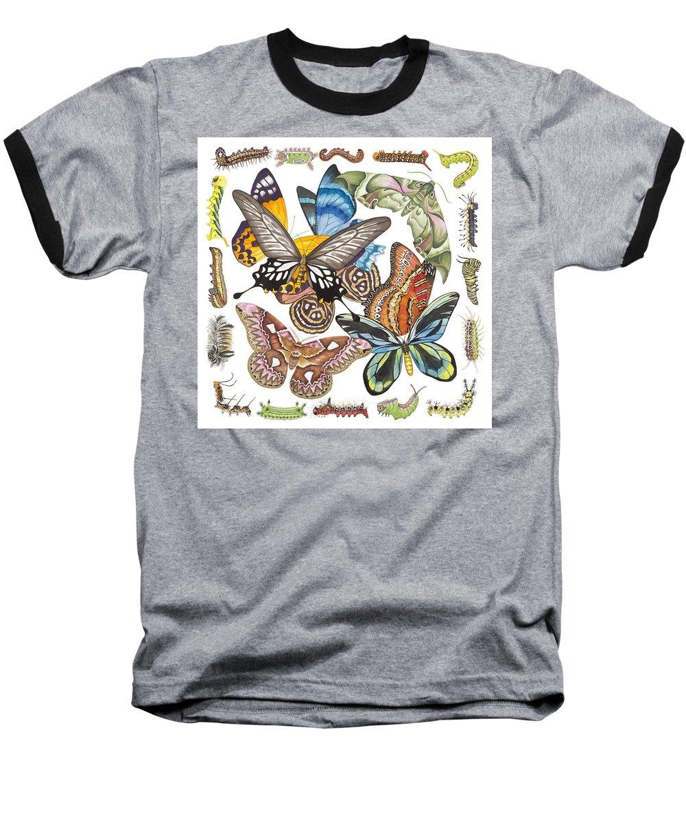 Butterflies Baseball T-Shirt featuring the painting Butterflies Moths Caterpillars by Lucy Arnold