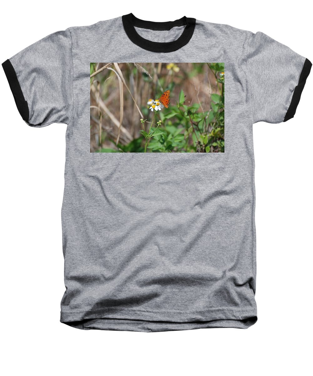 Butterfly Baseball T-Shirt featuring the photograph Butterfly Flower by Rob Hans