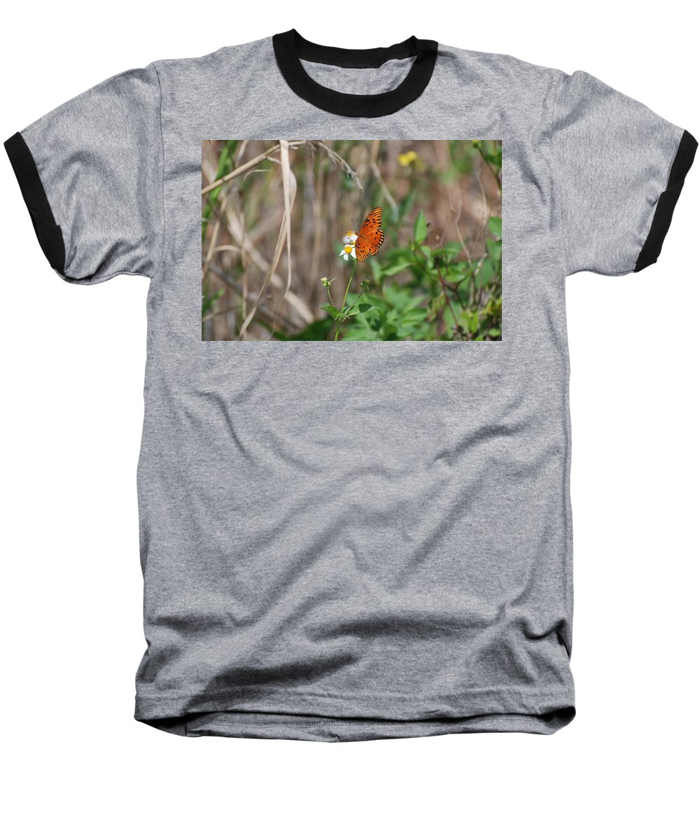 Nature Baseball T-Shirt featuring the photograph Butterfly On Flower by Rob Hans