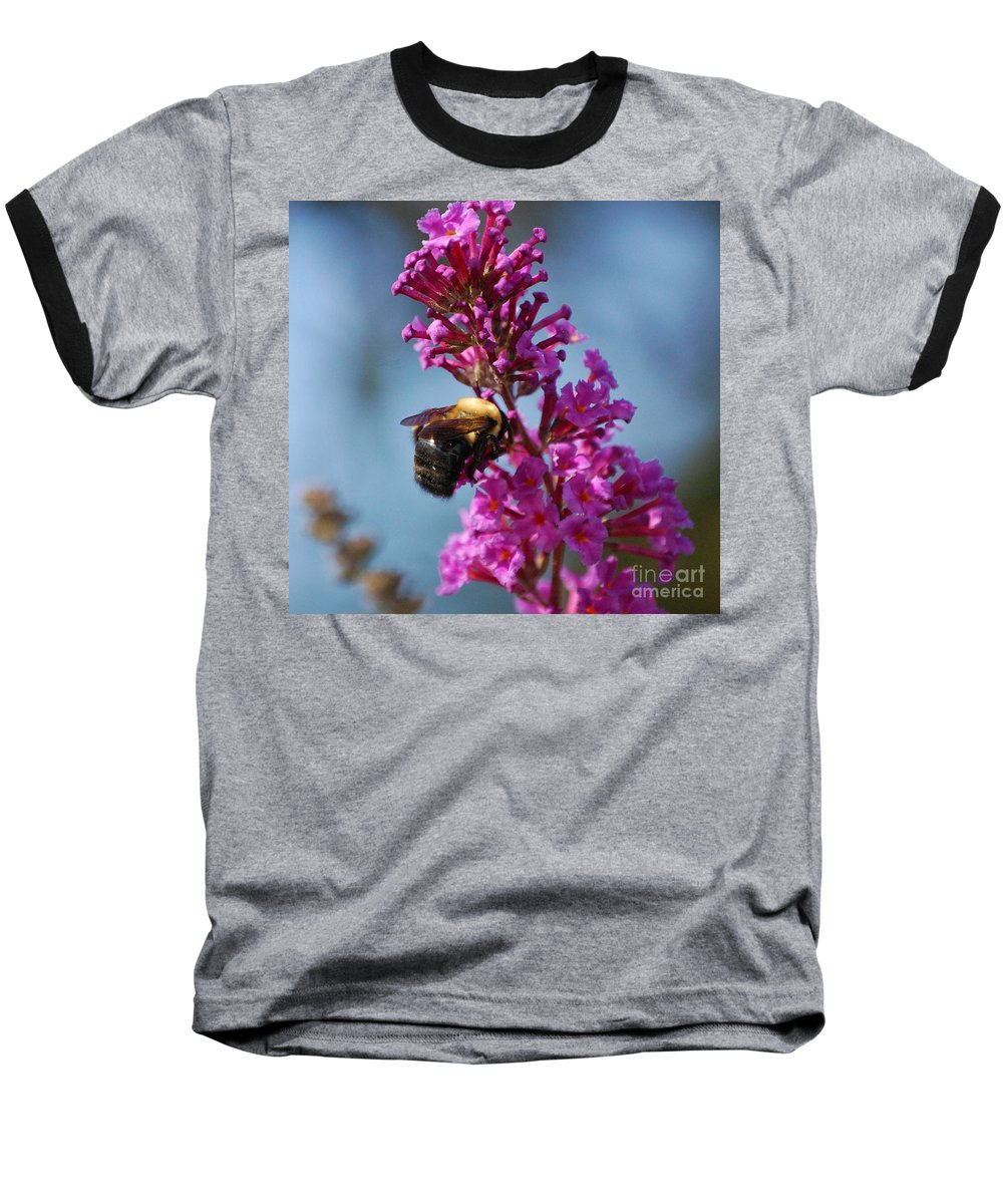 Bee Baseball T-Shirt featuring the photograph Buzzed by Debbi Granruth