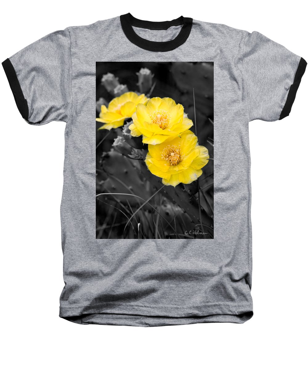 Cactus Baseball T-Shirt featuring the photograph Cactus Blossom by Christopher Holmes