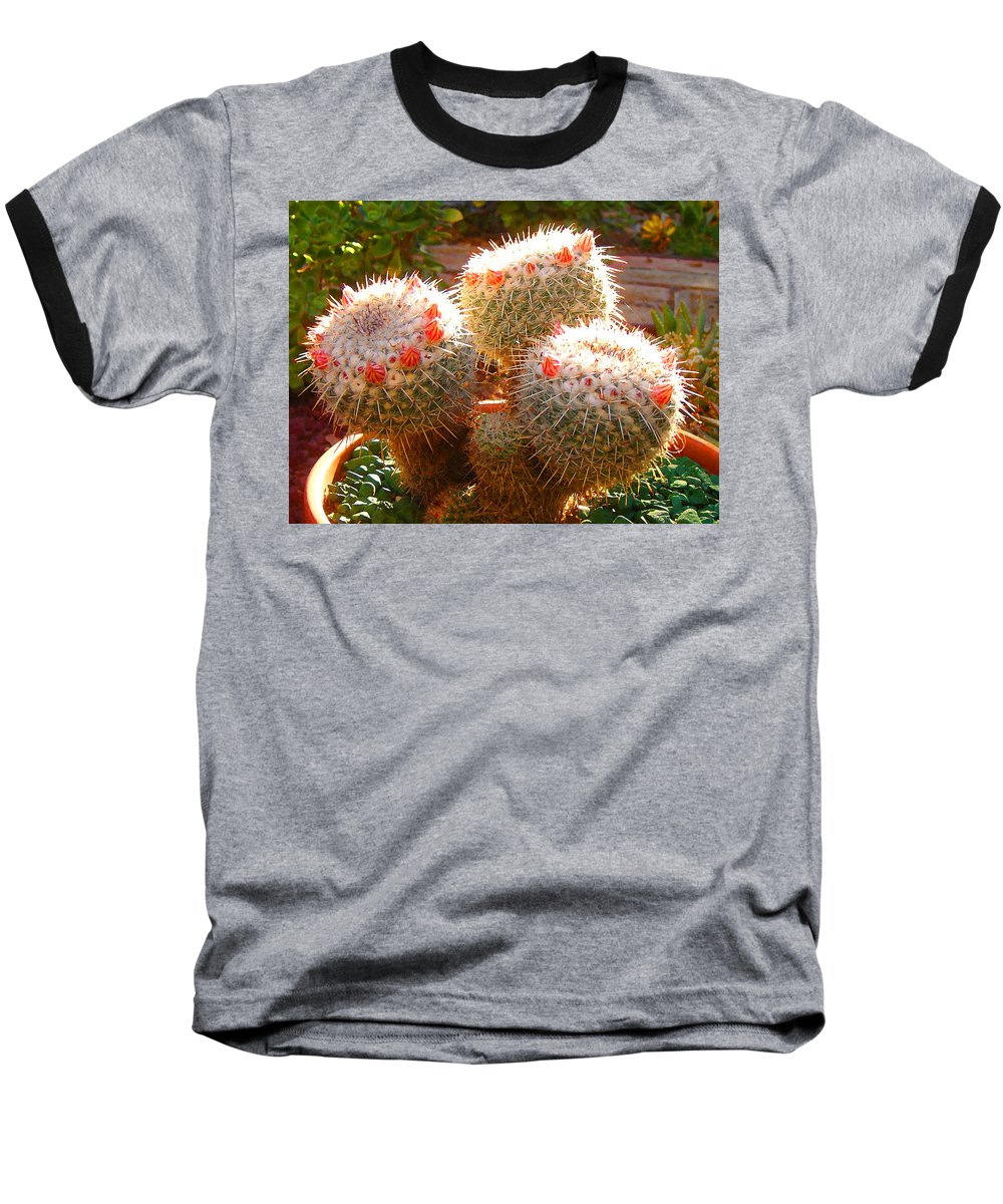 Landscape Baseball T-Shirt featuring the photograph Cactus Buds by Amy Vangsgard
