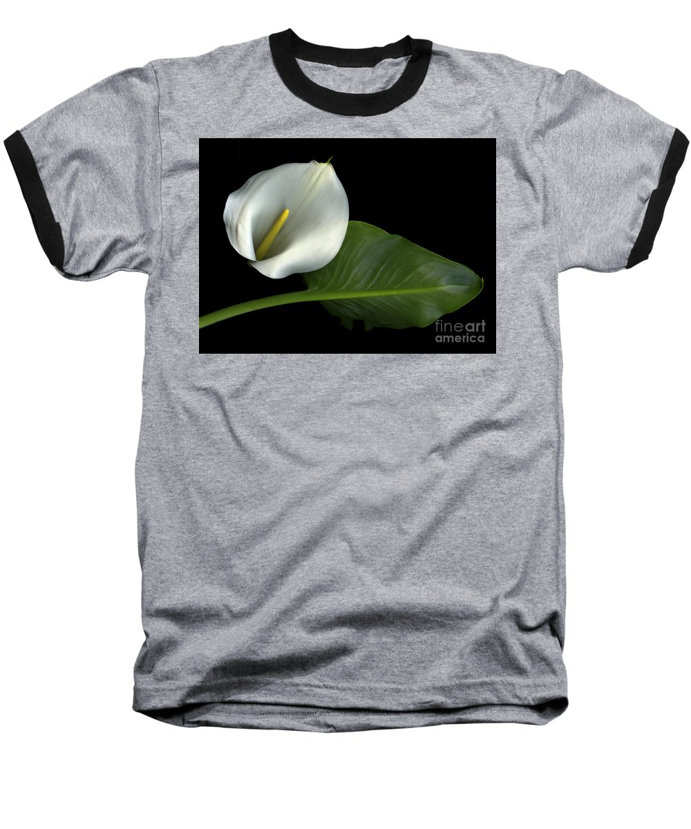 Scanography Baseball T-Shirt featuring the photograph Calla Lily by Christian Slanec
