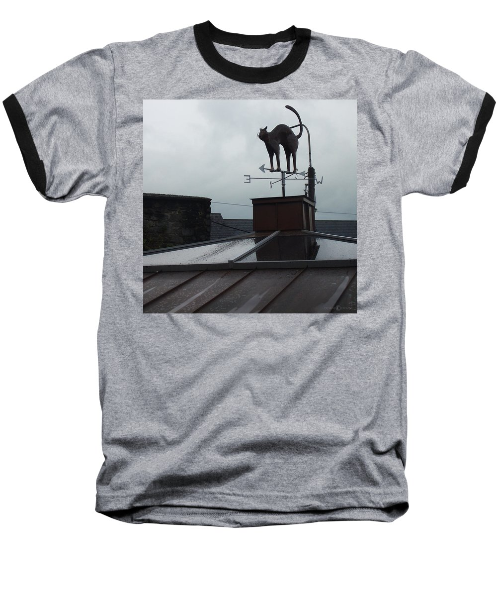 Cat Baseball T-Shirt featuring the photograph Cat On A Cool Tin Roof by Tim Nyberg