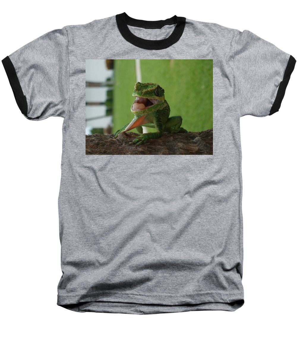 Iguana Baseball T-Shirt featuring the photograph Chilling On Wood by Rob Hans
