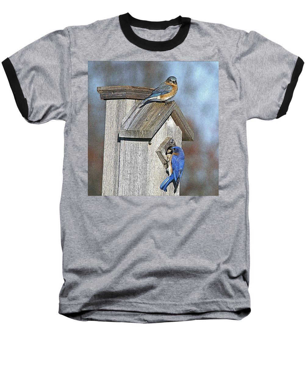 Nature Baseball T-Shirt featuring the photograph Cleaning House by Robert Pearson