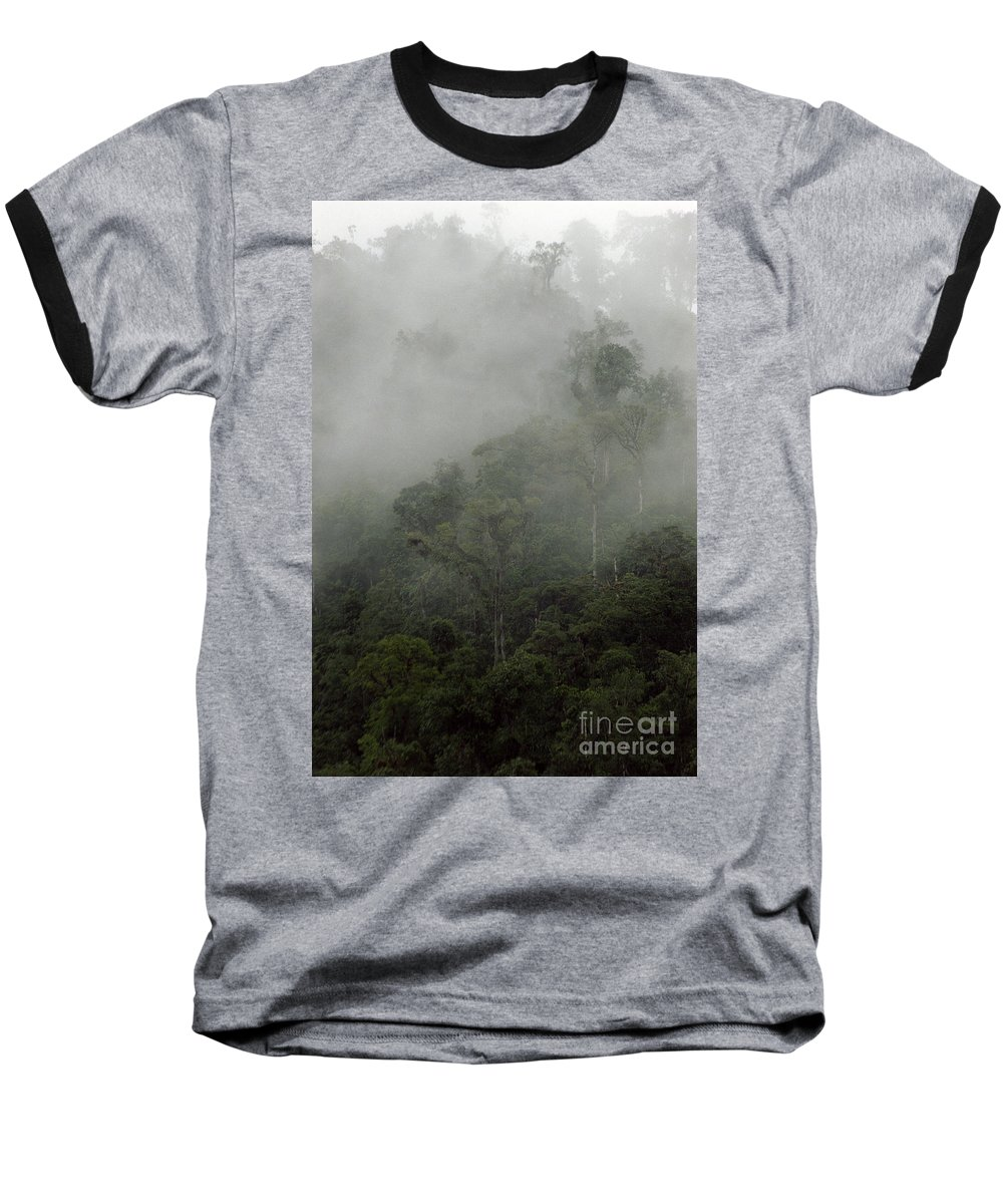 Rainforest Baseball T-Shirt featuring the photograph Cloud Forest by Kathy McClure