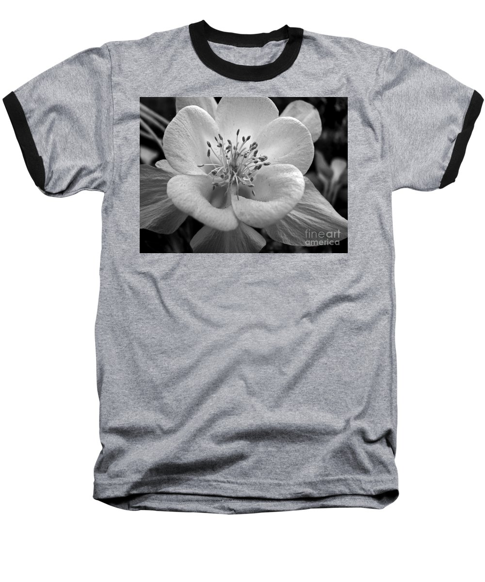 Flowers Baseball T-Shirt featuring the photograph Columbine by Amanda Barcon