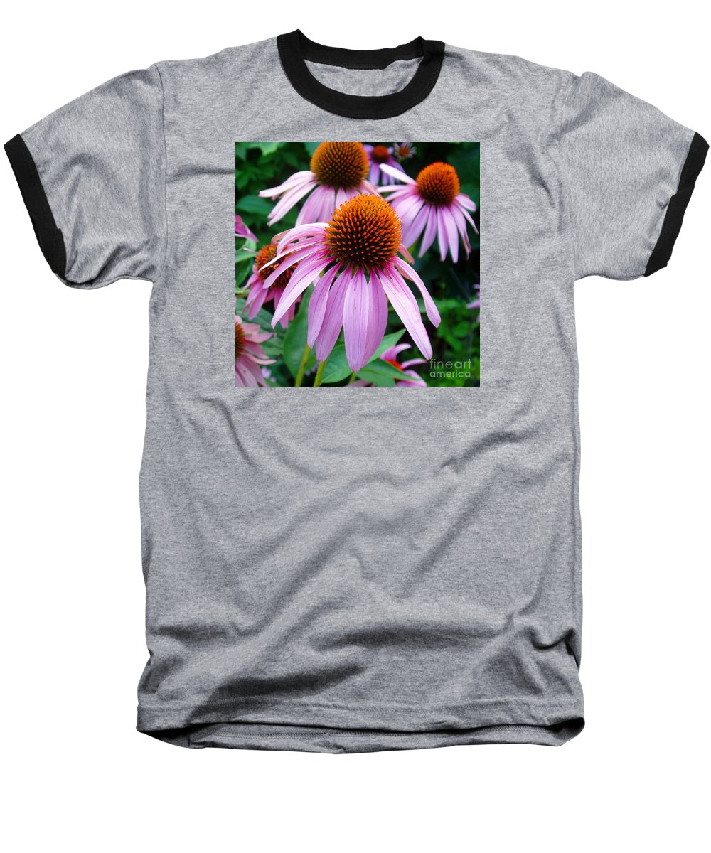 Coneflowers Baseball T-Shirt featuring the photograph Three Coneflowers by Nancy Mueller