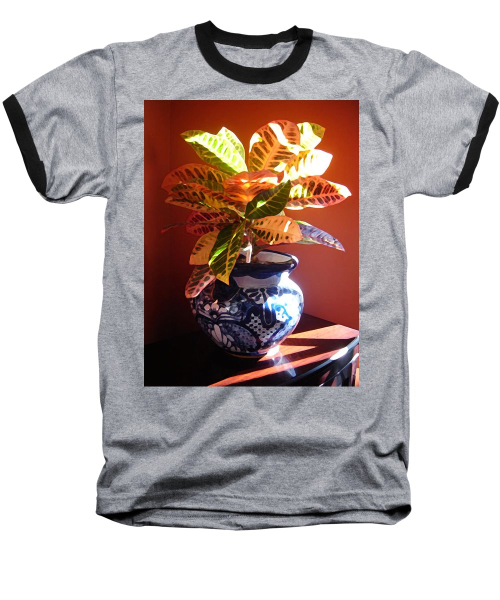 Potted Plant Baseball T-Shirt featuring the photograph Croton In Talavera Pot by Amy Vangsgard
