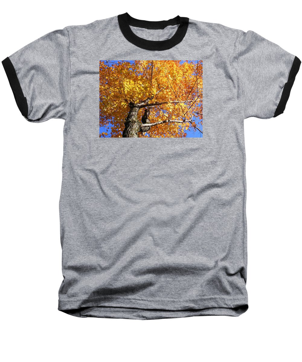 Trees Baseball T-Shirt featuring the photograph Crown Fire by Dave Martsolf