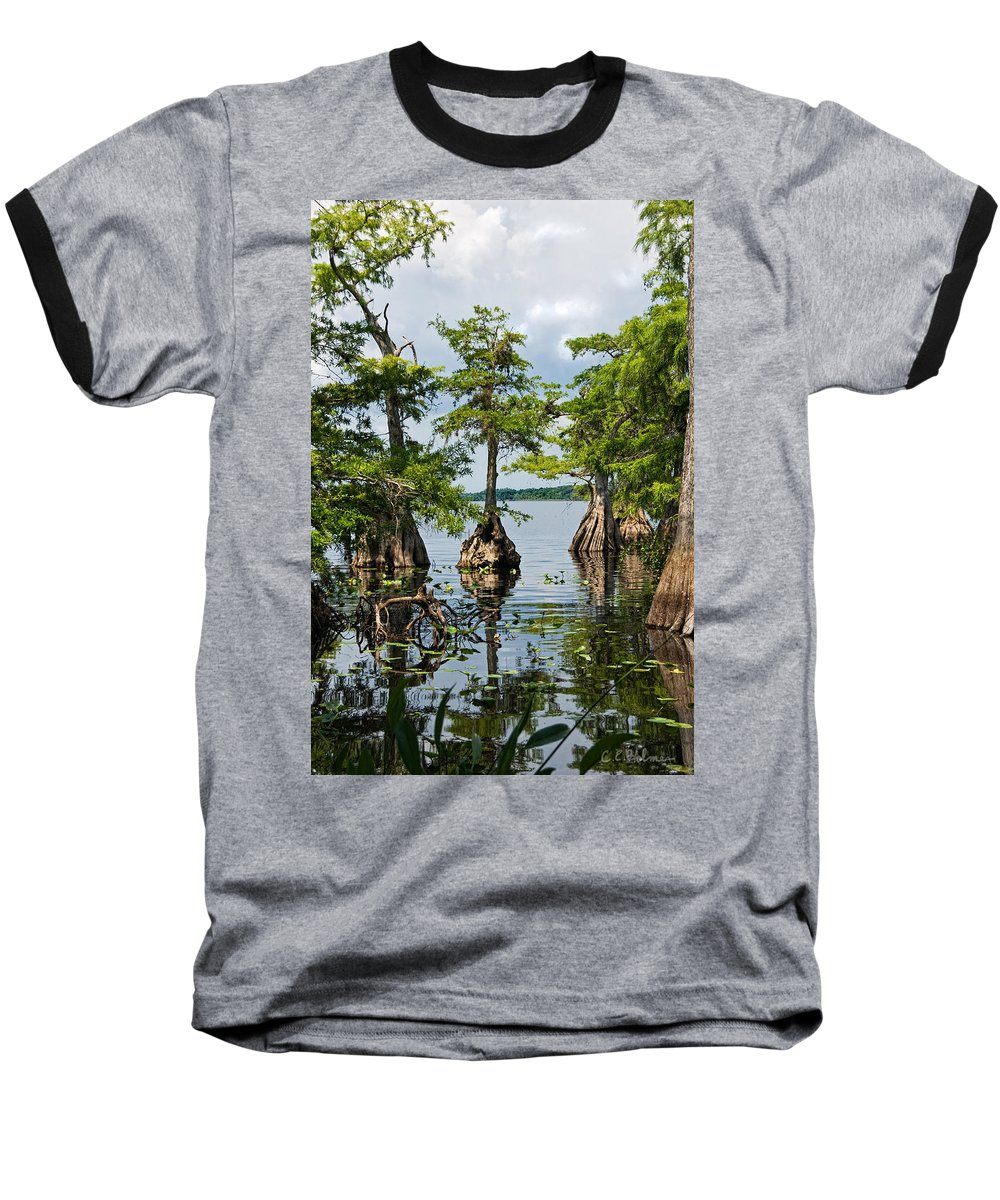 Trees Baseball T-Shirt featuring the photograph Cypress Reflections by Christopher Holmes