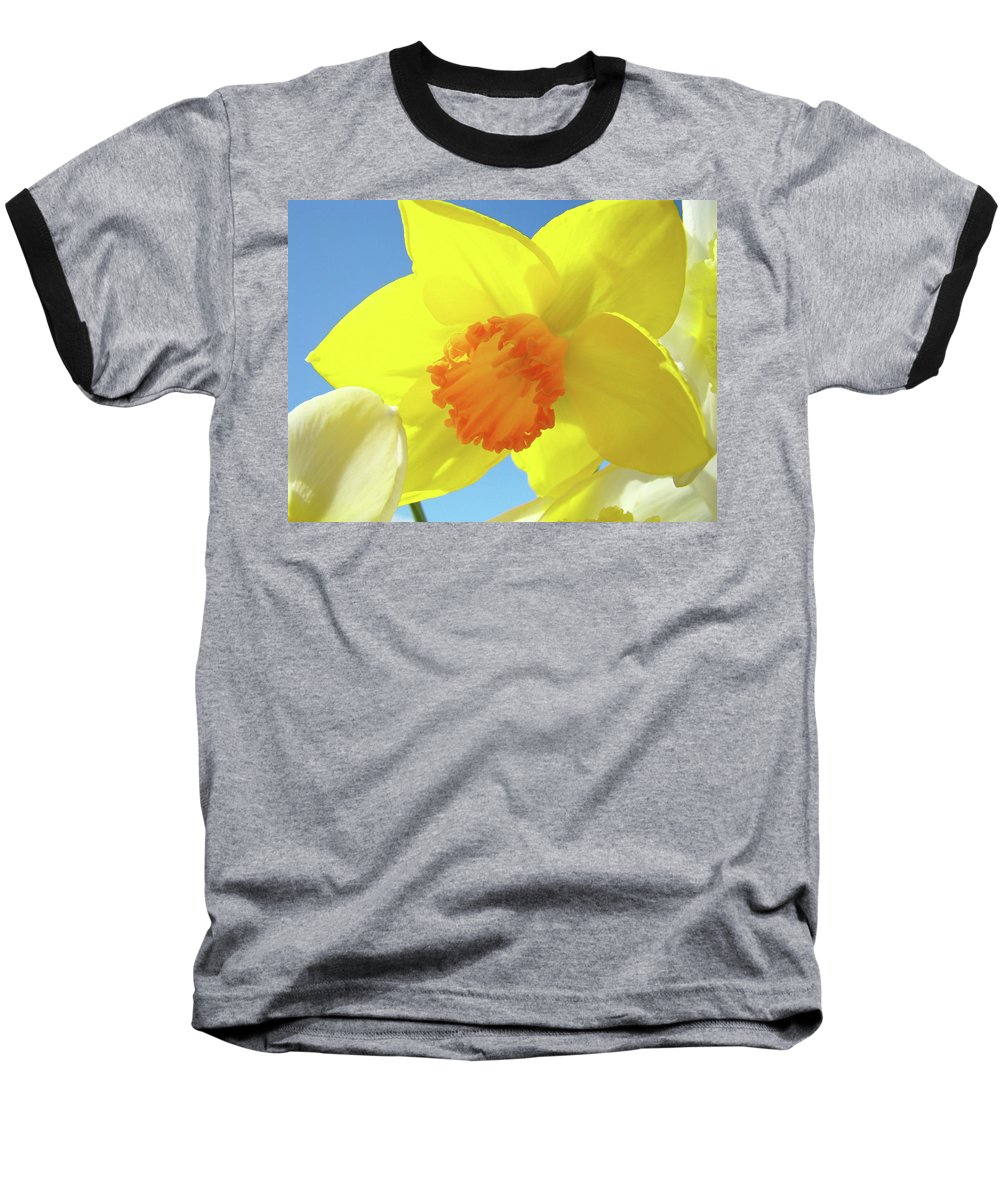 �daffodils Artwork� Baseball T-Shirt featuring the photograph Daffodil Flowers Artwork 18 Spring Daffodils Art Prints Floral Artwork by Baslee Troutman