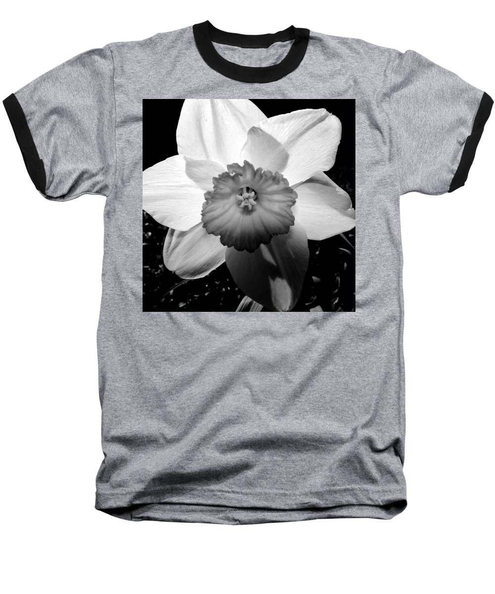 Daffodil Baseball T-Shirt featuring the photograph Daffodil In Springtime by Michelle Calkins