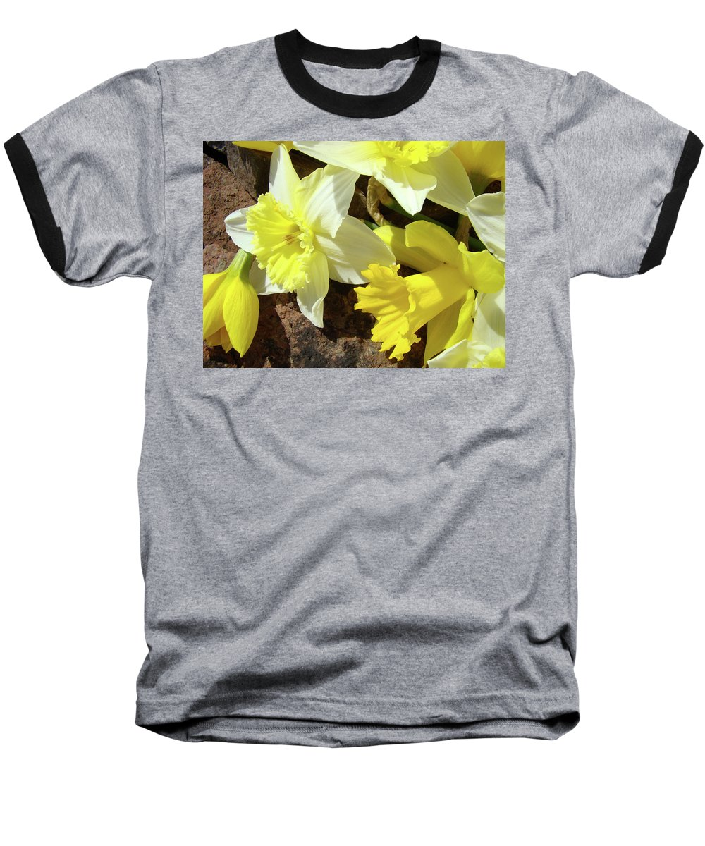�daffodils Artwork� Baseball T-Shirt featuring the photograph Daffodils Flower Bouquet Rustic Rock Art Daffodil Flowers Artwork Spring Floral Art by Baslee Troutman