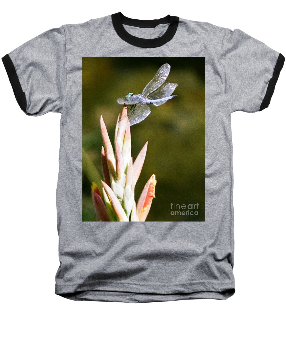 Dragonfly Baseball T-Shirt featuring the photograph Damselfly by Dean Triolo