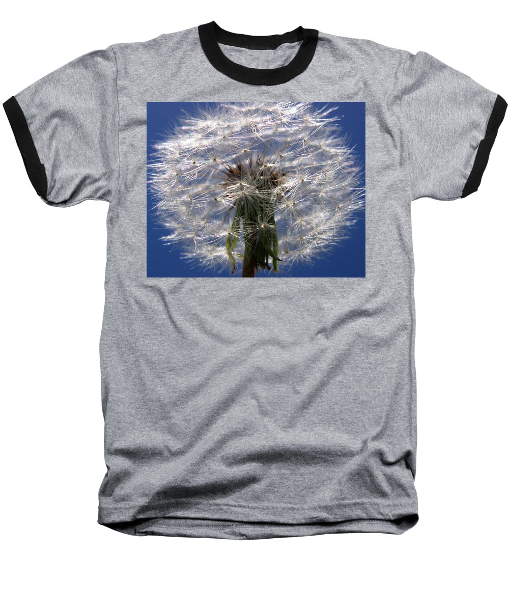 Dandelion Baseball T-Shirt featuring the photograph Dandelion by Ralph A Ledergerber-Photography