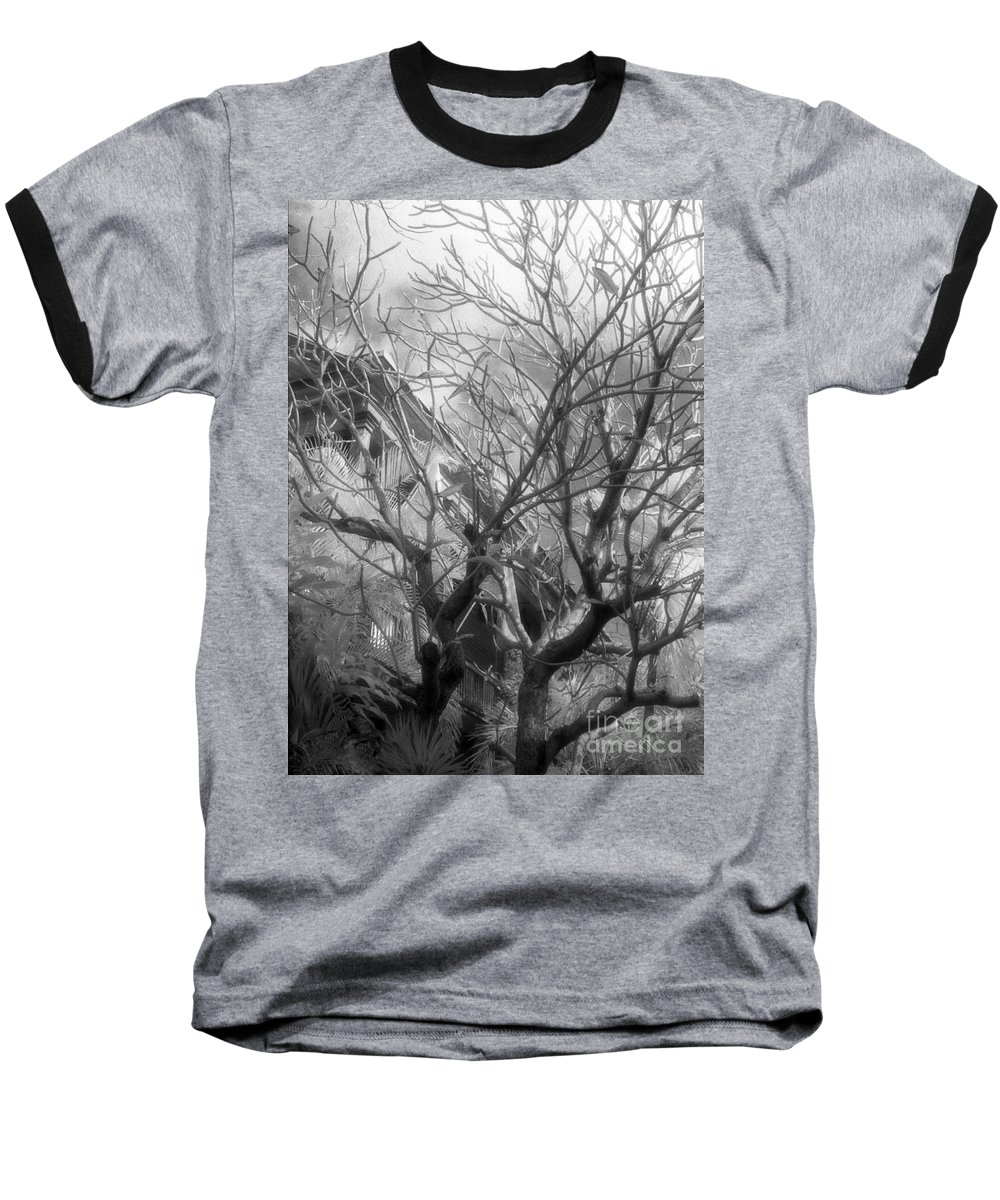Infrared Photography Baseball T-Shirt featuring the photograph Day Dream by Richard Rizzo
