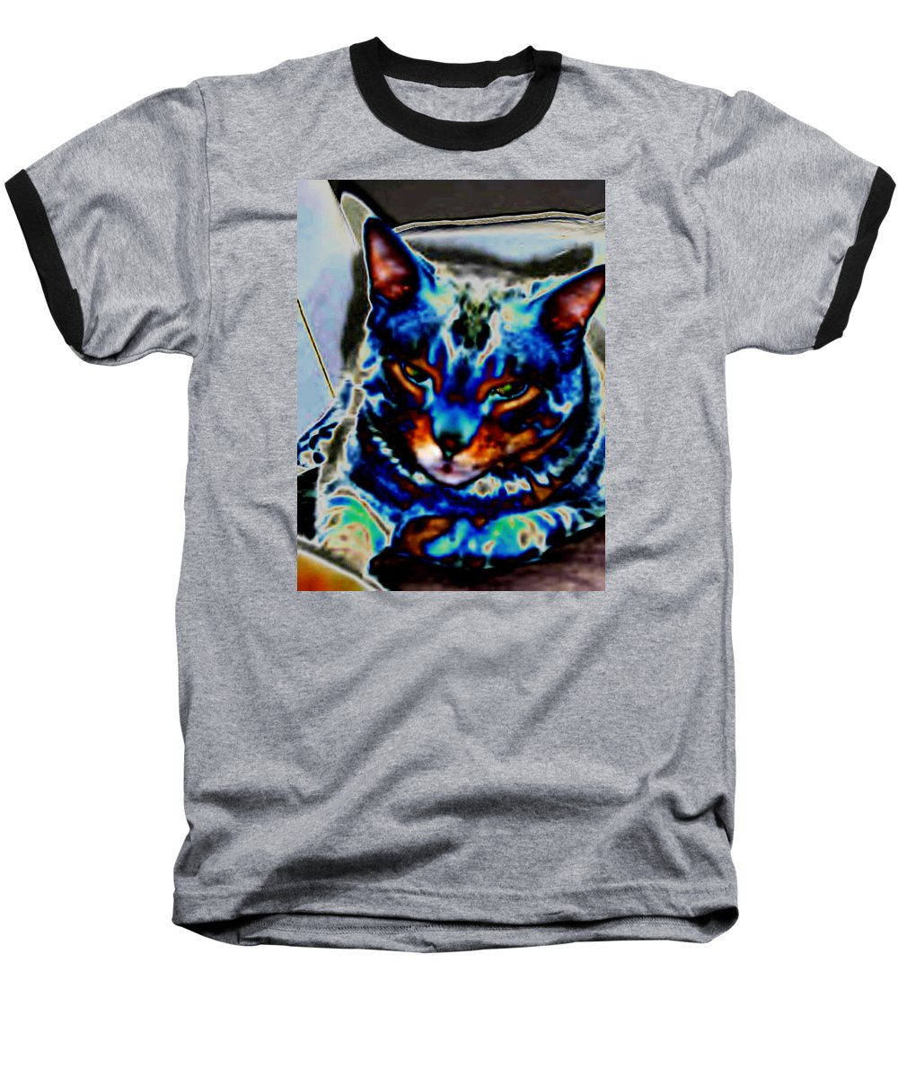 Cat Baseball T-Shirt featuring the photograph Day Dreamer by Dawn Johansen