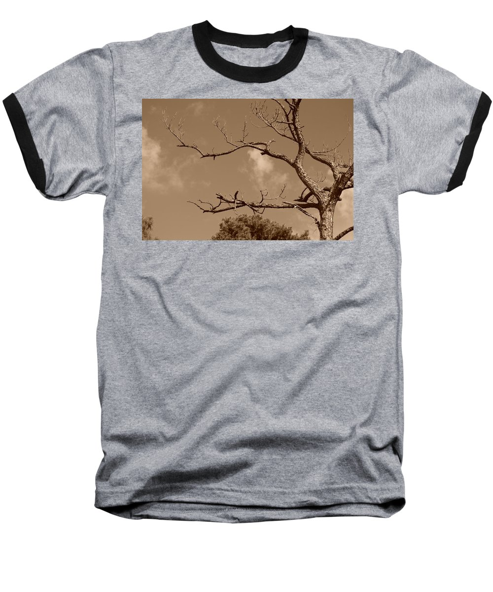 Sepia Baseball T-Shirt featuring the photograph Dead Wood by Rob Hans
