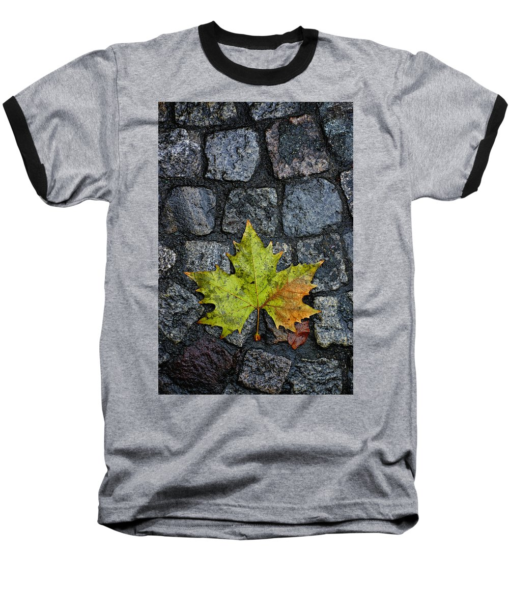 Nature Baseball T-Shirt featuring the photograph Deville by Skip Hunt