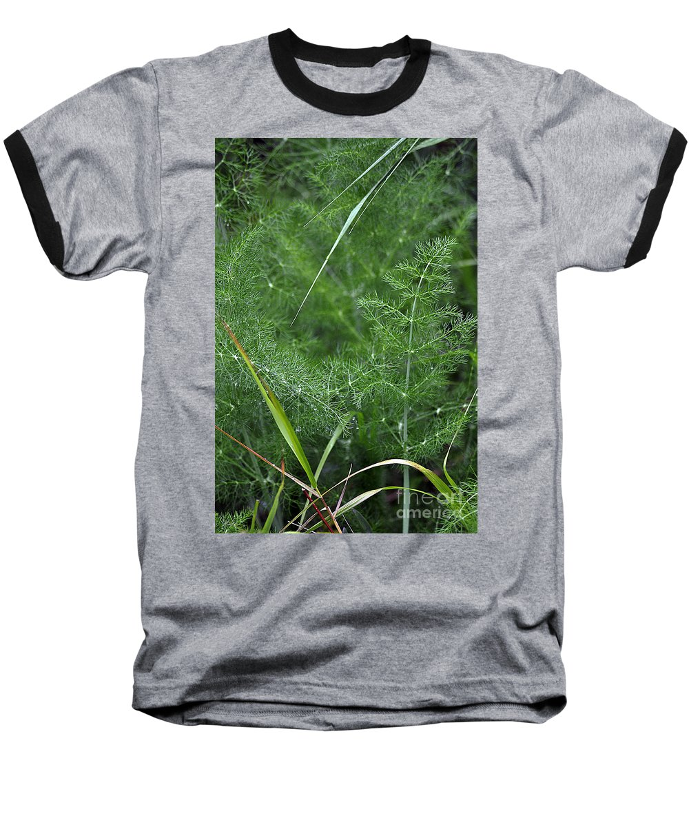 Clay Baseball T-Shirt featuring the photograph Dew On The Ferns by Clayton Bruster