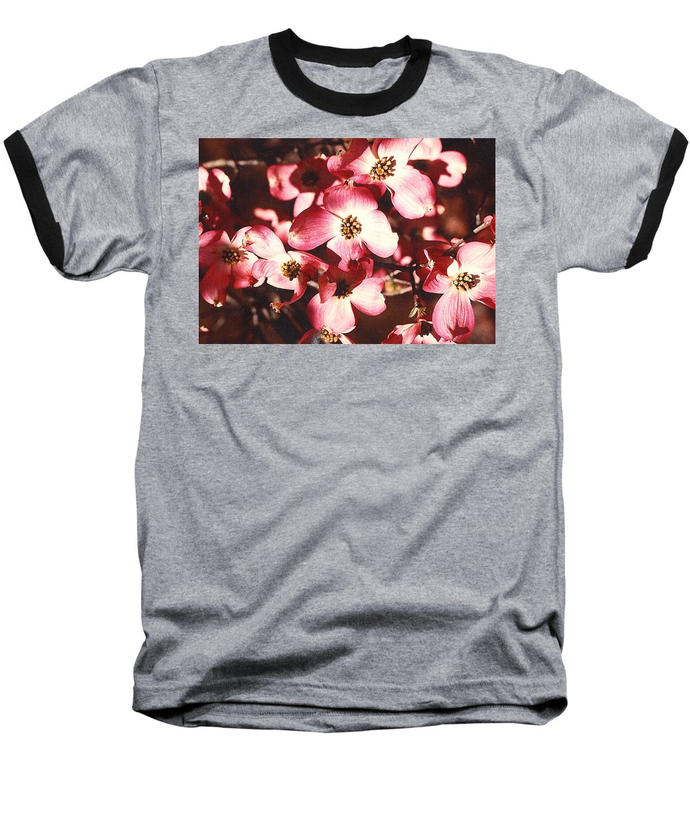Dogwood Baseball T-Shirt featuring the photograph Dogwood Harmony by Nancy Mueller