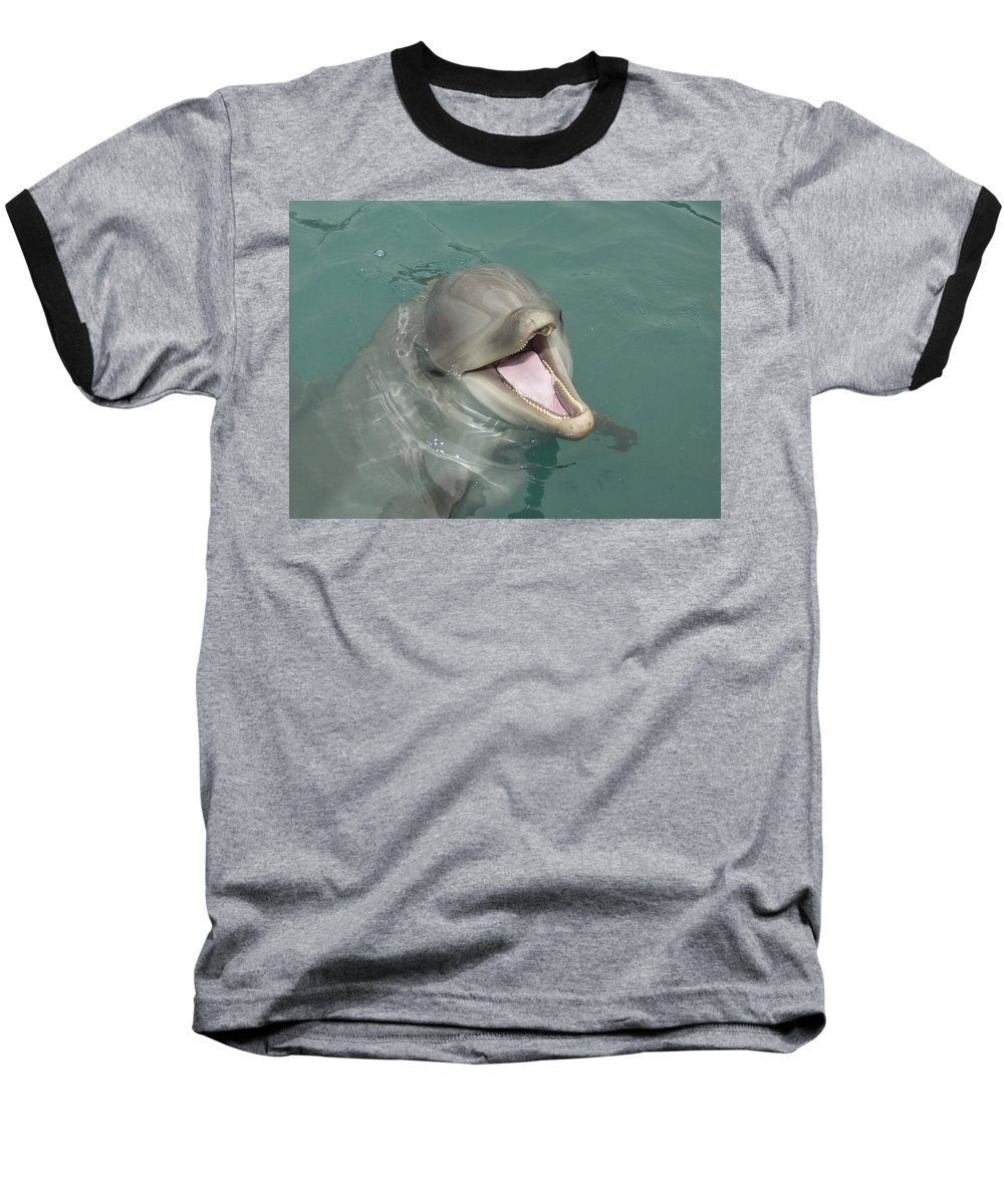 Dolphin Baseball T-Shirt featuring the painting Dolphin by Sean M