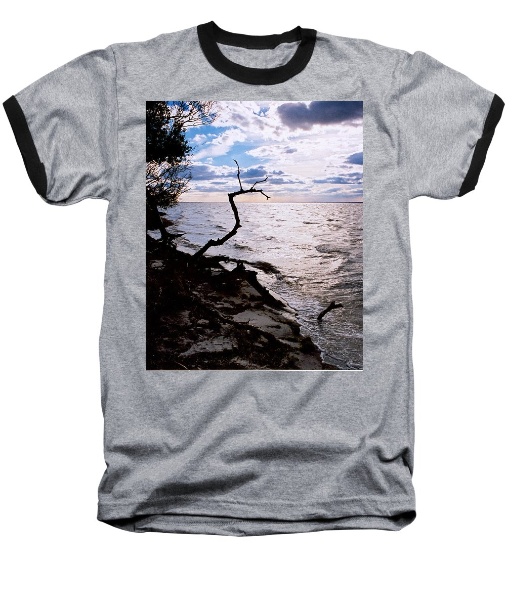 Barnegat Baseball T-Shirt featuring the photograph Driftwood Dragon-barnegat Bay by Steve Karol