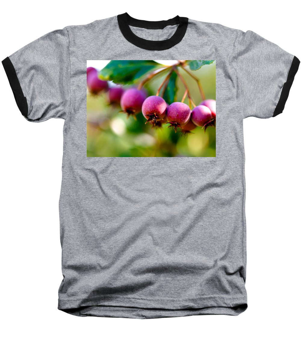 Berry Baseball T-Shirt featuring the photograph Fall Berries by Marilyn Hunt