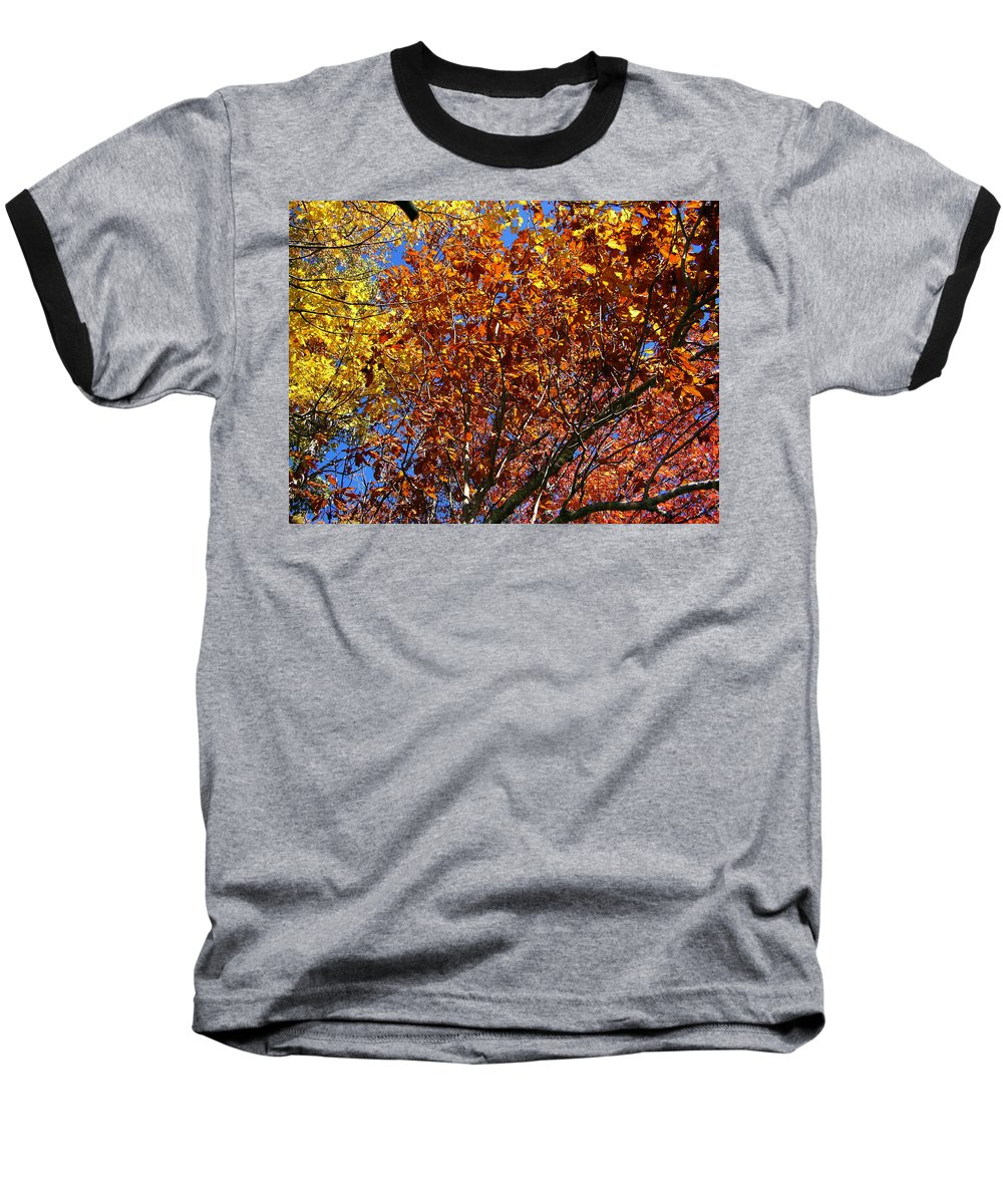 Fall Baseball T-Shirt featuring the photograph Fall by Flavia Westerwelle