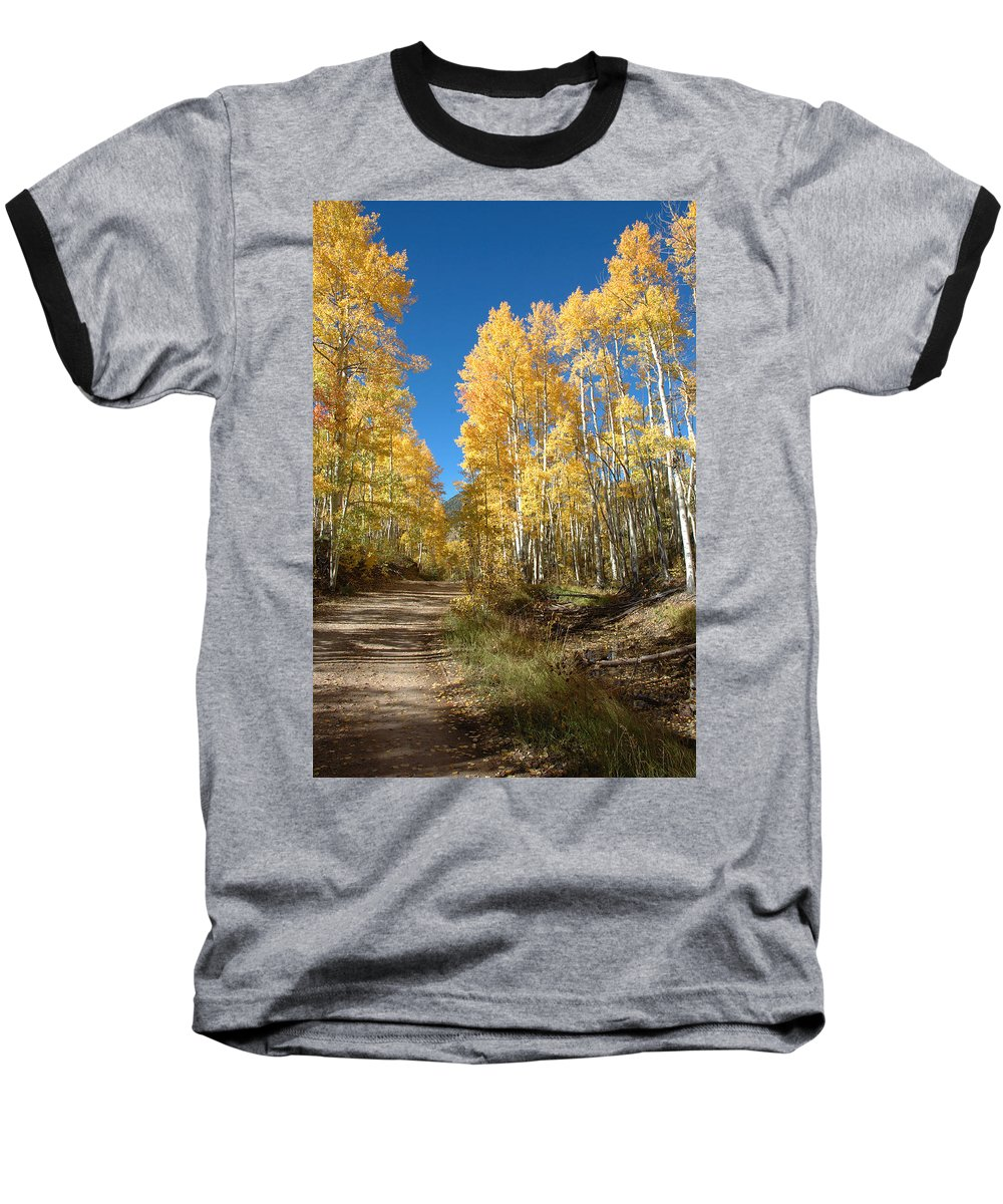 Landscape Baseball T-Shirt featuring the photograph Fall Road by Jerry McElroy