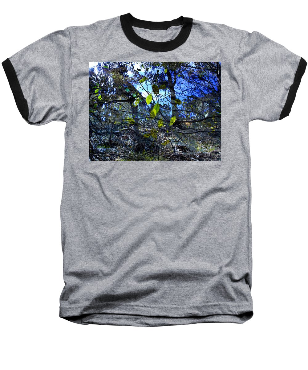 Leaves Baseball T-Shirt featuring the photograph Falling Leaves by Kelly Jade King