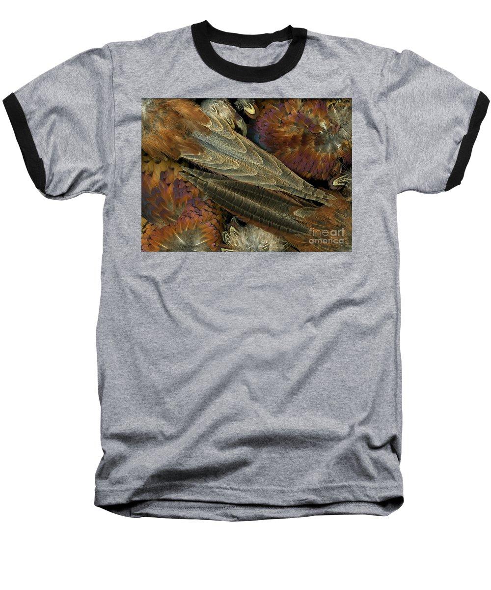 Pheasant Baseball T-Shirt featuring the photograph Featherdance by Christian Slanec