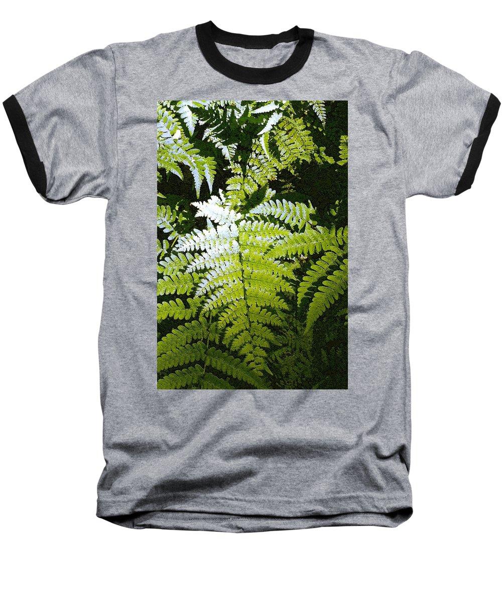 Ferns Baseball T-Shirt featuring the photograph Ferns by Nelson Strong