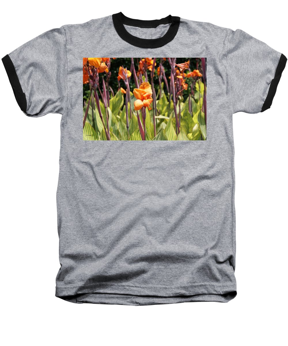 Floral Baseball T-Shirt featuring the photograph Field For Iris by Shelley Jones